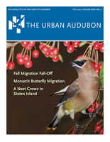 The Urban Audubon - Fall 2015 Cover